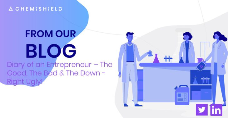 Diary of an Entrepreneur The Good The Bad and the Down Right Ugly 1